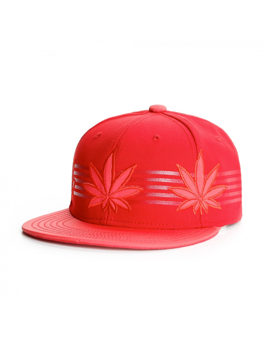 Cayler & Sons Black Label Flash strapback red reflective - Sale